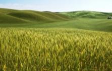 Γρεβενά: Ανησυχία των αγροτών για τo ενδεχόμενο μη ένταξής τους στο πρόγραμμα των βιολογικών